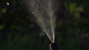 1 300x169 - Irrigation