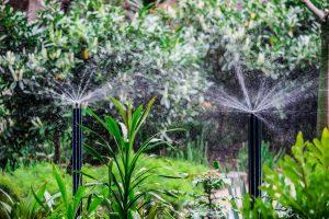 Fitzroy 2 300x200 - Fitzroy Gardens Sprinkers