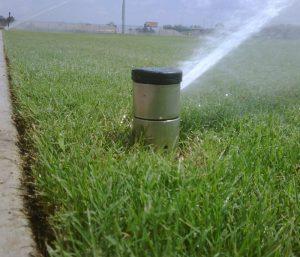Irrigation 300x257 - Irrigation