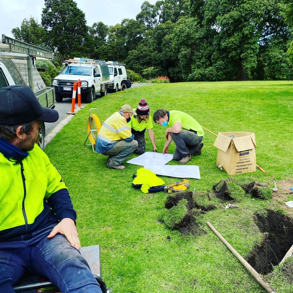 RBG 6 1024x1024 - Protecting Royal Botanic Garden's 400 year old trees is a boring job